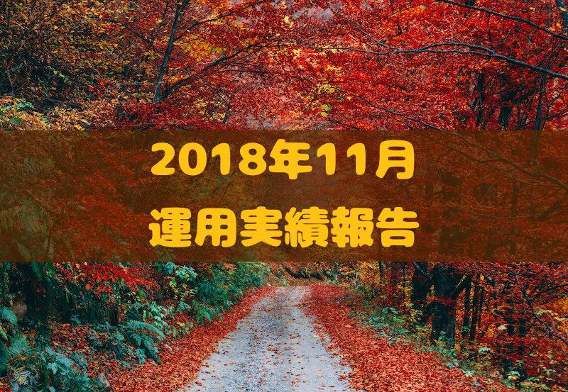 2018年11月運用実績報告